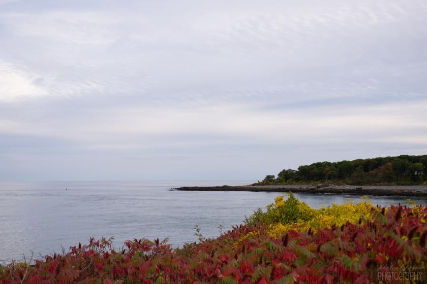 1409_Maine_003