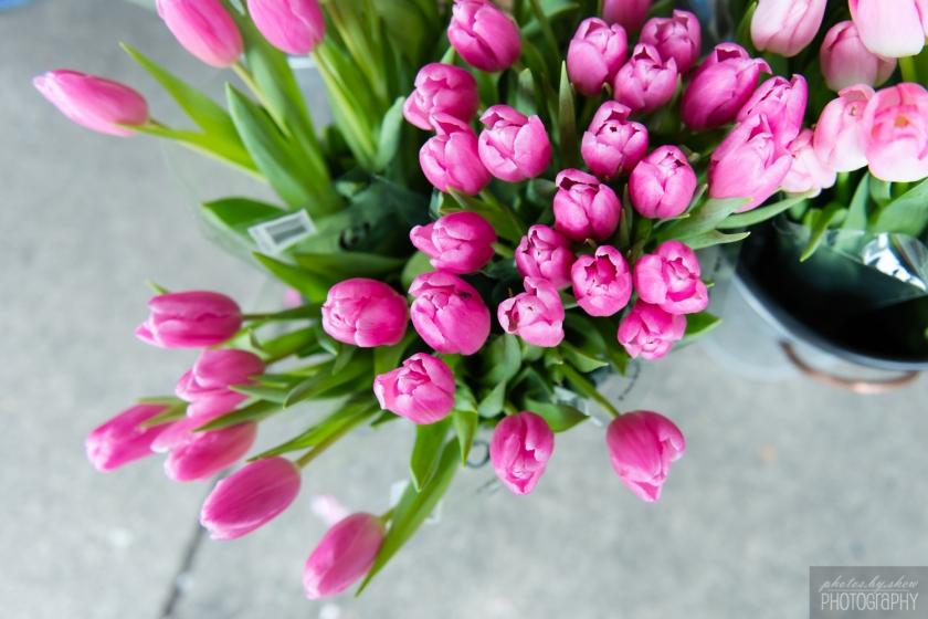 1502_Spring_002