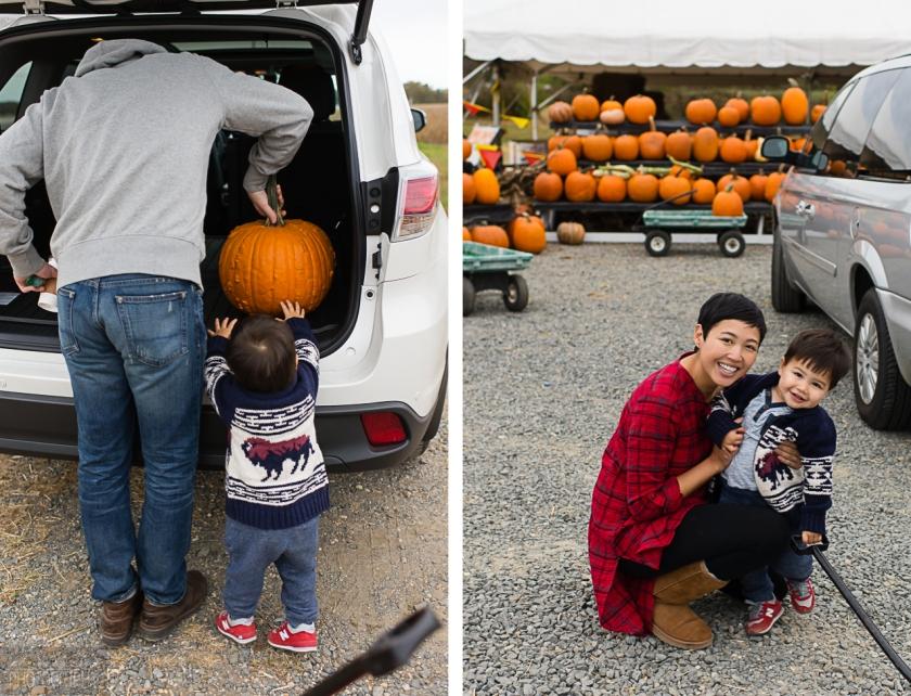 Fall_pumpkin_2